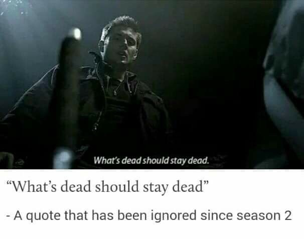 "supernatural meme - Text - What's dead should stay dead. ""What's dead should stay dead"" -A quote that has been ignored since season 2"