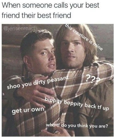 supernatural meme - Text - When someone calls your best friend their best friend this creature is mine @jensenreacts shoo you dirty peasant bippity boppity back tf up get ur own whotf do you think you are? 117