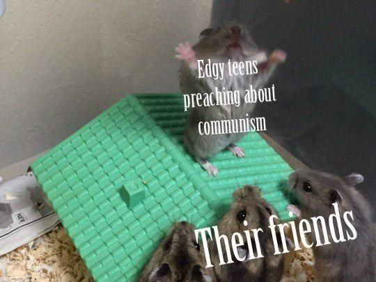 Rat - Edgy teens preaching about Communism Their friends