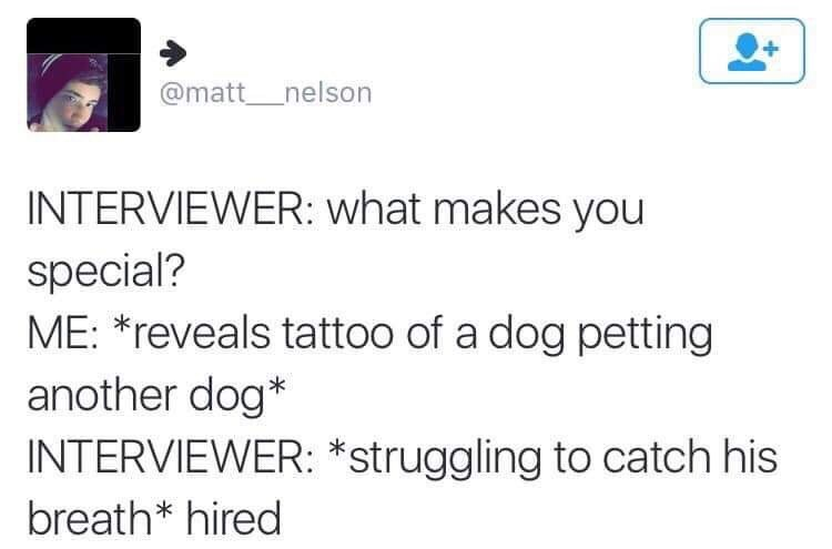 Text - @matt nelson INTERVIEWER: what makes you special? ME: *reveals tattoo of a dog petting another dog* INTERVIEWER: *struggling to catch his breath* hired