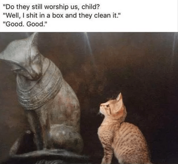 Meme of ancient Egyptian cat god conversing with kitten about whether humans still worship them