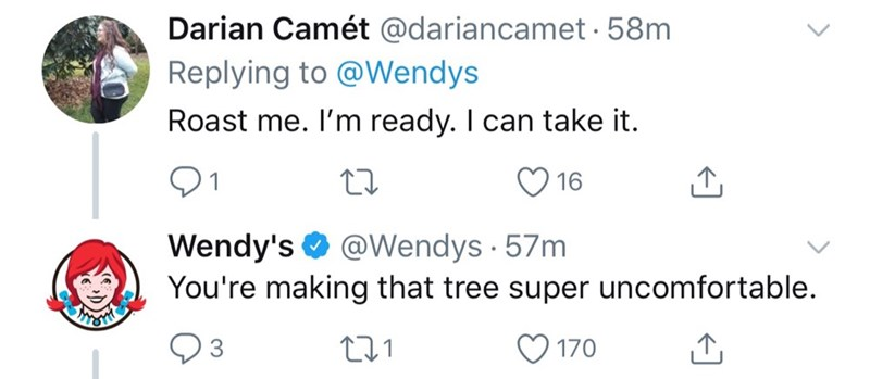 Text - Darian Camét @dariancamet 58m Replying to @Wendys Roast me. I'm ready. I can take it. 16 Wendy's You're making that tree super uncomfortable @Wendys 57m 170