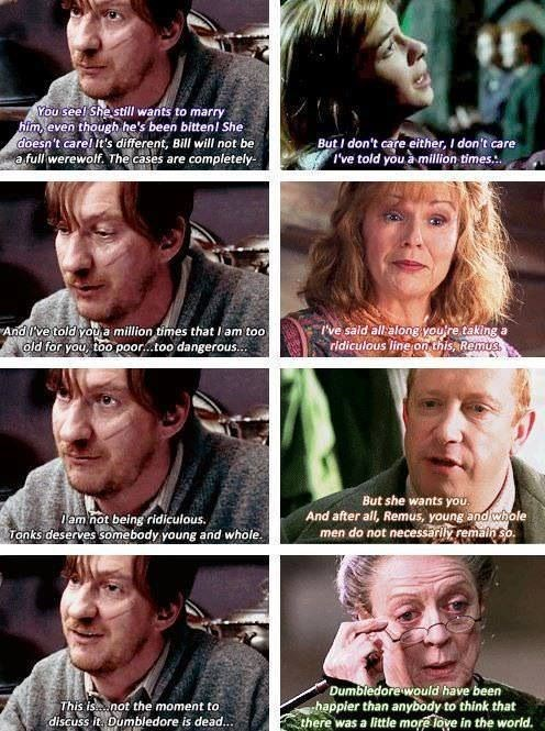 Harry Potter scene about Tonks and Lupin