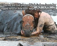 Water - Bhousted and mud-splatered Nirole Graham dung to her trapped horse for three hours keeping his head obove mud. RRino com
