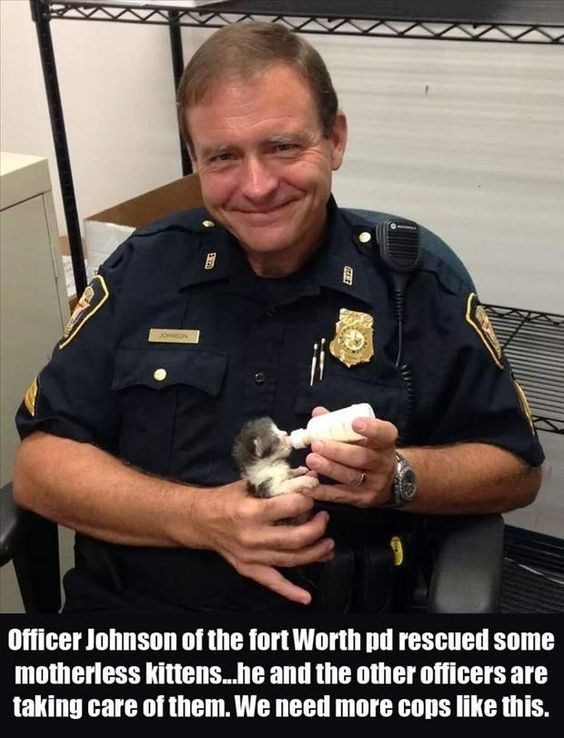 """Caption that reads, """"Officer Johnson of the Forth Worth PD rescued some motherless kittens...he and the other officers are taking care of them. We need more cops like this"""" below a pic of a police officer holding a kitten"""