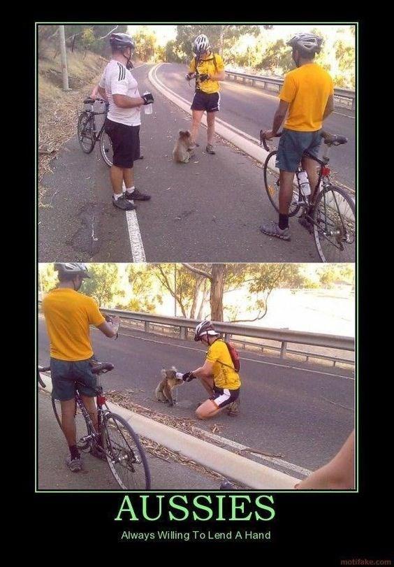 men riding bikes help out an animal