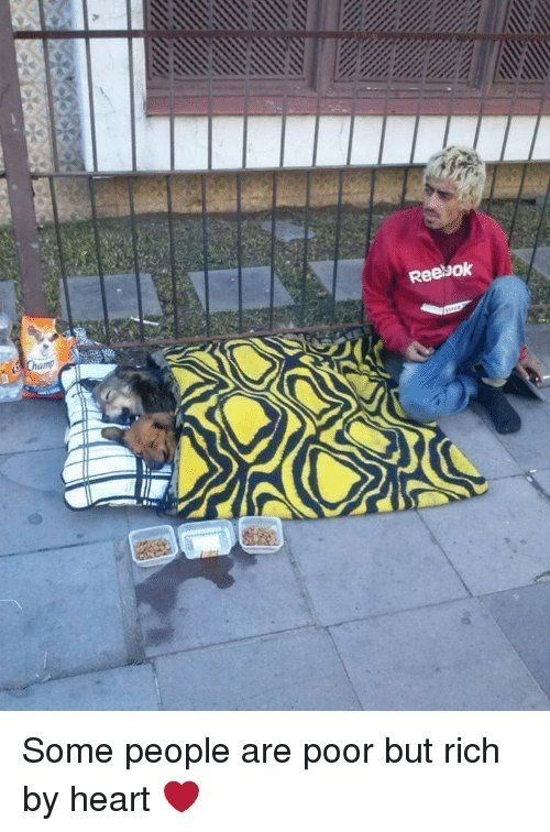 homeless man allowing 2 dogs to sleep in his bed