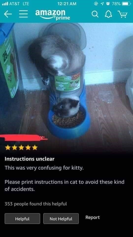 amazon review of a cat bowl that was misused by a cat
