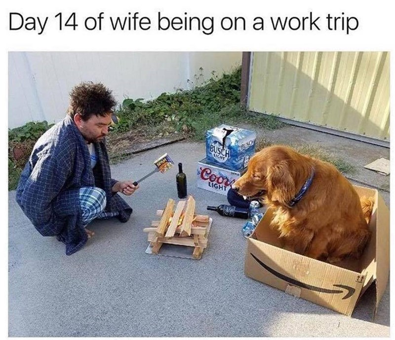 Meme about men losing domestication when their wives are away with pic of man warming food can over fire and dog sitting in a cardboard box