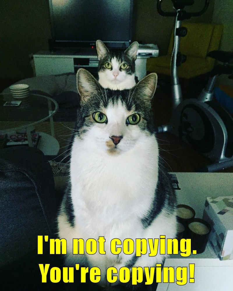 I\'m not copying. You\'re copying!
