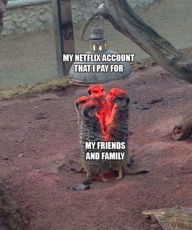 meme about everyone using your netflix account that you pay for