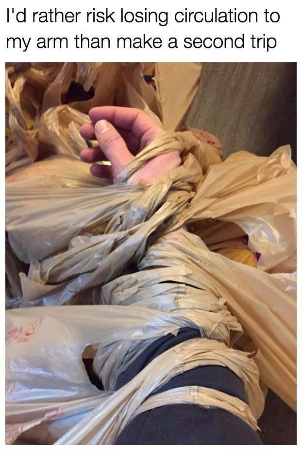 meme about taking all the shopping bags in one trip