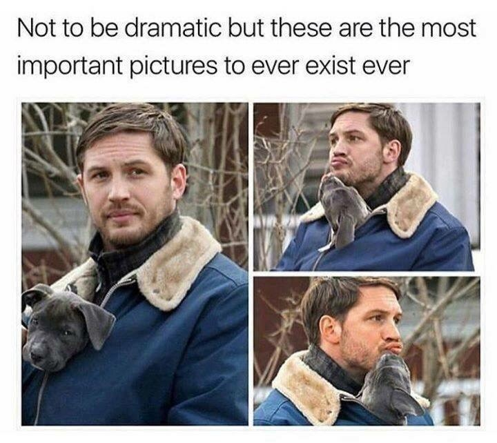tom hardy holding with a puppy being help in his closed jacket and licking his chin