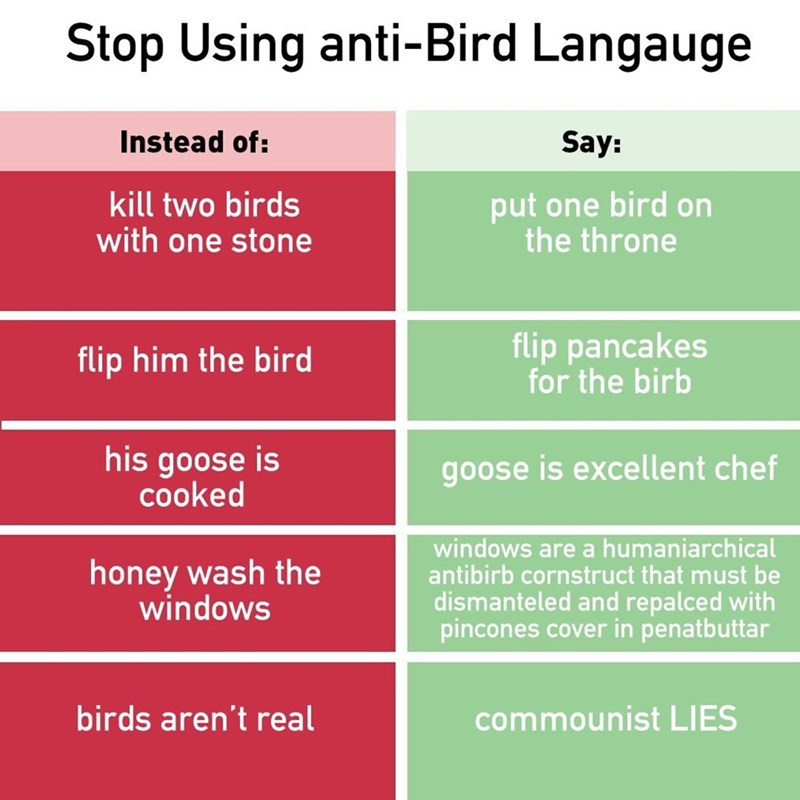 post of different ways to phrase things instead of using anti-bird language