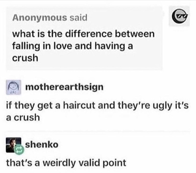 """Tumblr user posts, """"What is the difference between falling in love and having a crush?"""" someone replies, """"If they get a haircut and they're ugly it's a crush"""""""