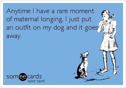 Text - Anytime I have a rare moment of maternal longing, I just put an outfit on my dog and it goes away. somee cards user card
