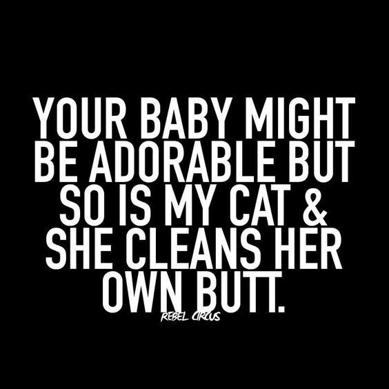 Font - YOUR BABY MIGHT BE ADORABLE BUT SO IS MY CAT& SHE CLEANS HER OWN BUTT. REBEL CRUS