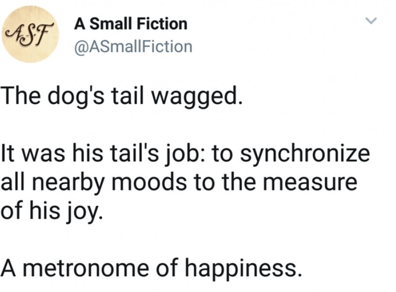 wholesome meme - Text - A Small Fiction S @ASmallFiction The dog's tail wagged. It was his tail's job: to synchronize all nearby moods to the mea of his joy A metronome of happiness.