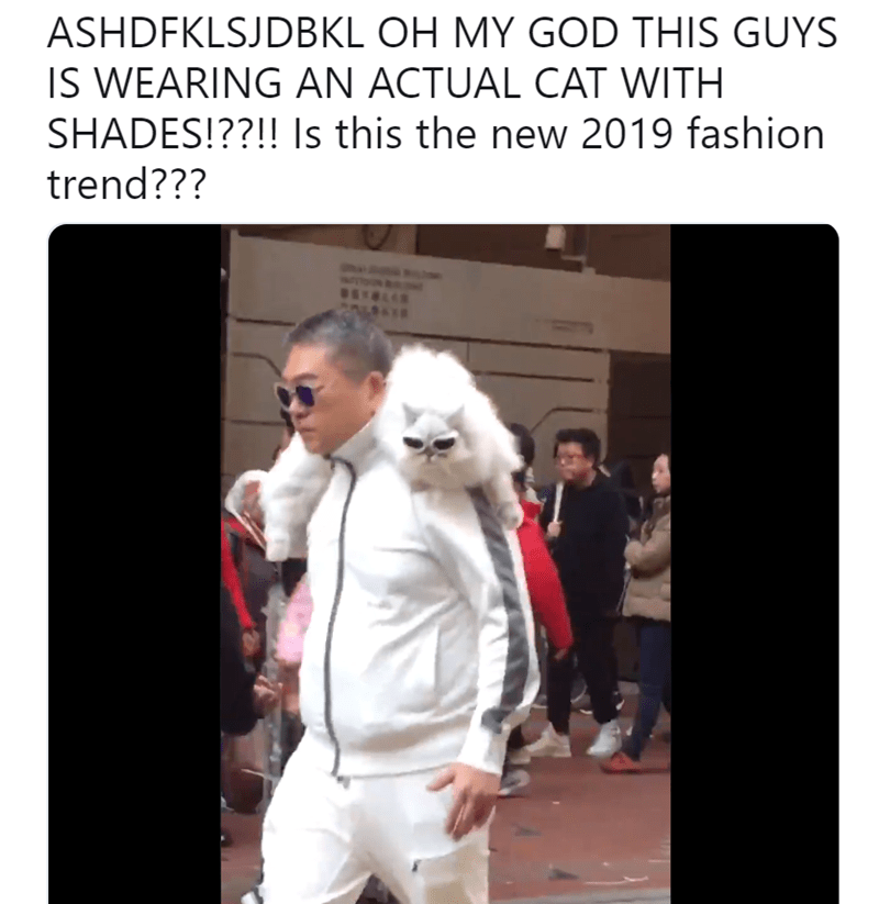 Fashion - ASHDFKLSJDBKL OH MY GOD THIS GUYS IS WEARING AN ACTUAL CAT WITH SHADES!??!! Is this the new 2019 fashion trend???