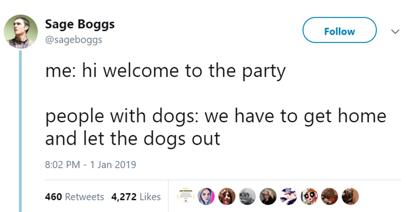 Text - Sage Boggs @sageboggs Follow me: hi welcome to the party people with dogs: we have to get home and let the dogs out 8:02 PM 1 Jan 2019 460 Retweets 4,272 Likes