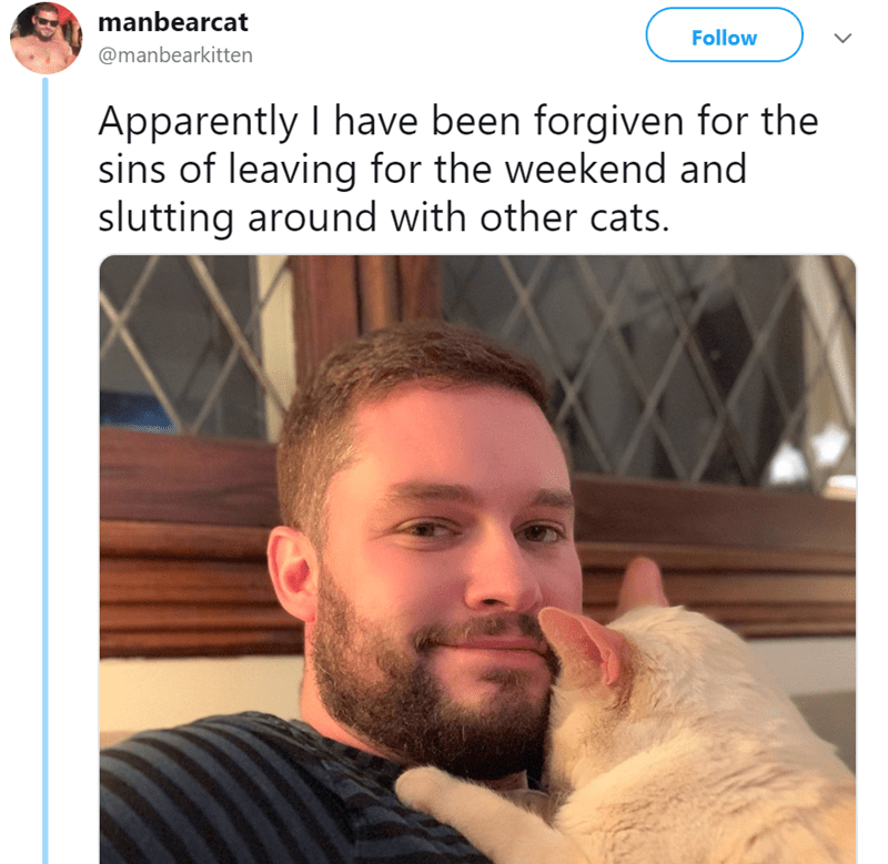 Facial hair - manbearcat Follow @manbearkitten Apparently I have been forgiven for the sins of leaving for the weekend and slutting around with other cats