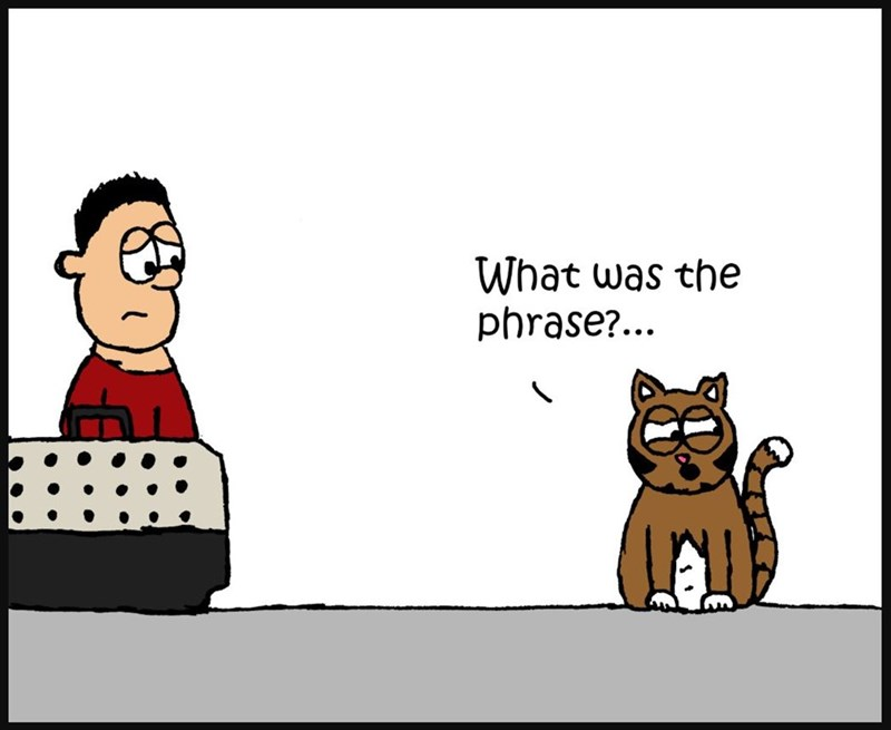 Cartoon - What was the phrase?...