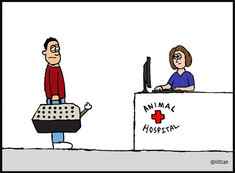 Cartoon - ANIMAL HoserTA @iizcat