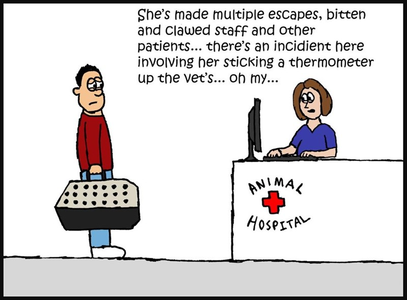Cartoon - She's made multiple escapes, bitten and Clawed staff and other patients... there's an incidient here invoIVing her Sticking a thermometer up the vet's... oh my... AMIMAK HOSPETA