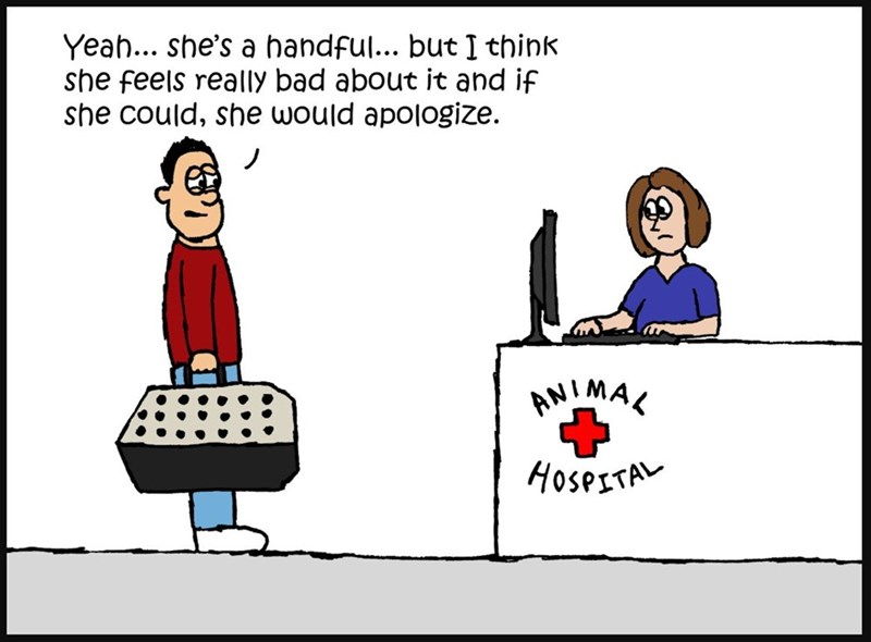 Cartoon - Yeah... she's a handful... but I think she feels really bad about it and if she could, she would apologize AMIMAL HOSPITAL