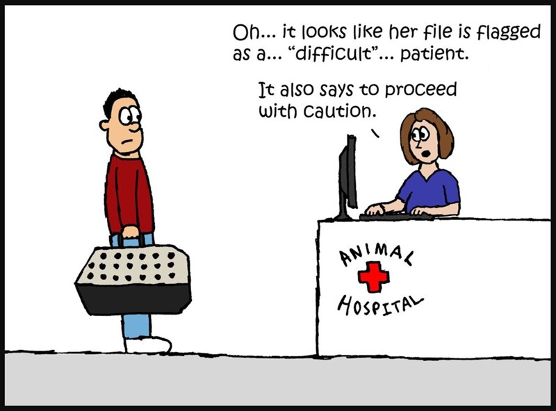 """Cartoon - Oh... it looks like her file is flagged as a.. """"difficult""""... patient It also says to proceed with caution. AMIMAK HOSPITA"""
