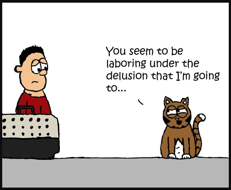 Cartoon - You seem to be laboring under the delusion that Tm going to...