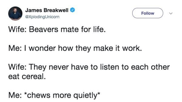 "Text - James Breakwell Follow axplodingUnicorn Wife: Beavers mate for life. Me: I wonder how they make it work Wife: They never have to listen to each other eat cereal. Me: ""chews more quietly*"