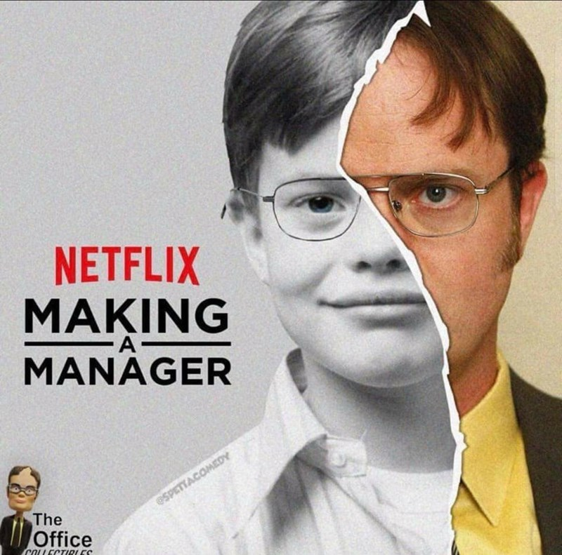 Dwight Shrute from the office in a parody of Making a murderer tv show