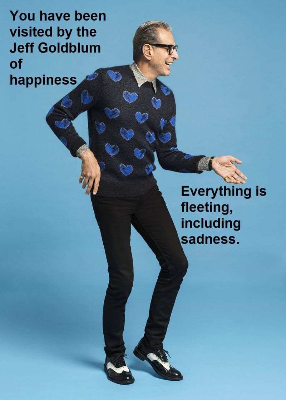 encouraging meme of Jeff Goldblum promising sadness will pass