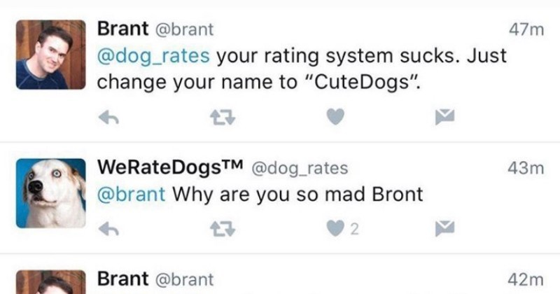 Guy's interaction with We Rate Dogs on Twitter comes full circle.