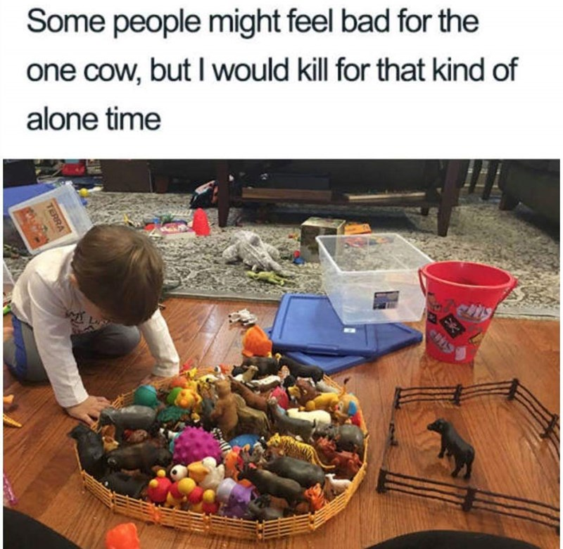 meme about wanting time alone with pic of toy cow alone inside a fence next to another fence filled with other toys