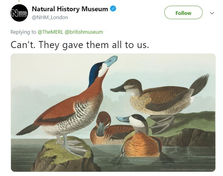 """Tweet from Natural History Museum that reads, """"Can't. They gave them all to us"""" above an illustration of some ducks"""