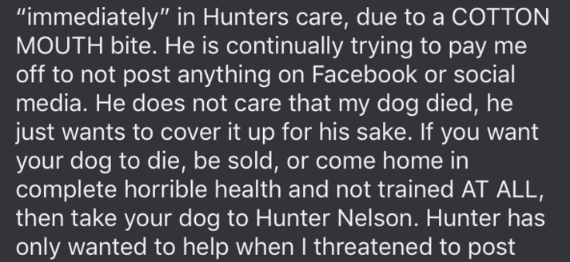 "dog trainer scam - Text - ""immediately"" in Hunters care, due to a COTTON MOUTH bite. He is continually trying to pay me off to not post anything on Facebook or social media. He does not care that my dog died, he just wants to cover it up for his sake. If you want your dog to die, be sold, or come home in complete horrible health and not trained AT ALL, then take your dog to Hunter Nelson. Hunter has only wanted to help when I threatened to post"