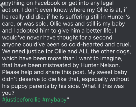 dog trainer scam - Text - Anything on Facebook or get into any legal action. I don't even know where my Ollie is at, if he really did die, if he is suffering still in Hunter's care, or was sold. Ollie was and still is my baby and I adopted him to give him a better life. I would've never have thought for a second anyone could've been so cold-hearted and cruel. We need justice for Ollie and ALL the other dogs, which have been more than I want to imagine, that have been mistreated by Hunter Nelson.