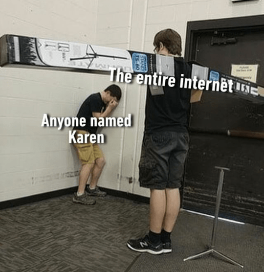 "Object-label meme where a middle-school boy with wings made out of boxes represents ""The entire internet"" and another boy cowering in the corner represents, ""Anyone named Karen"""