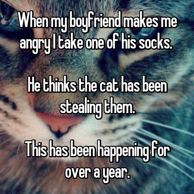 Text - When my boyfriend makes me jangryltake one of his socks He thinks the cat has been stealing them Tis has been happening for over a year