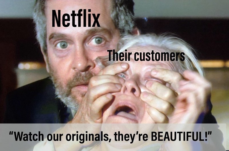 Bird Box meme about Netflix making you watch their original content