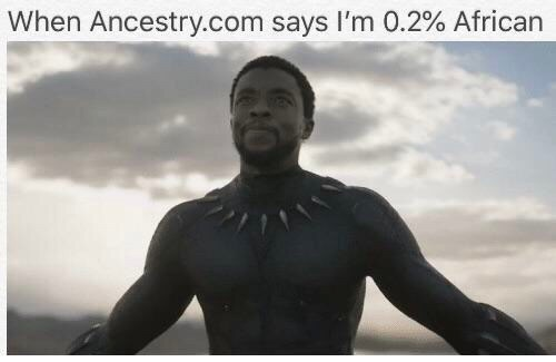Meme about finding out you have some black ancestry with pic of Black Panther