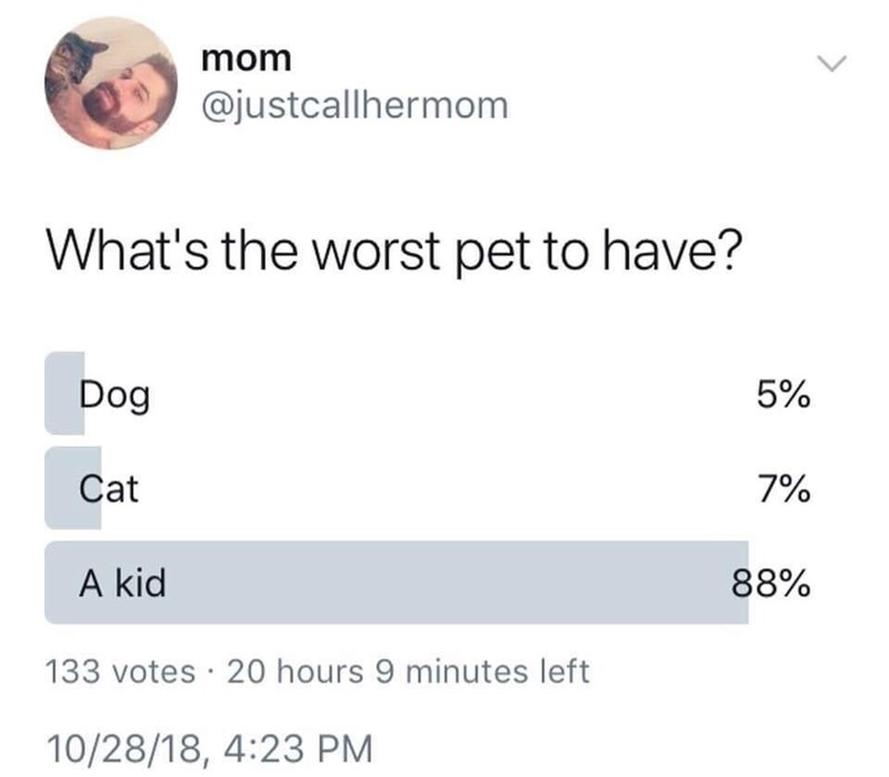 "Twitter poll that asks what the worst pet to have is; 88% of respondents answer ""kids"" before dogs and cats"
