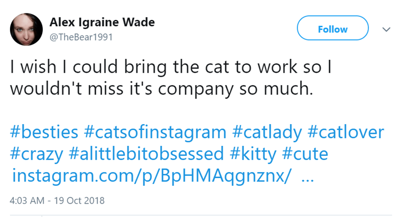 Text - Alex Igraine Wade @The Bear1991 Follow I wish I could bring the cat to work so I wouldn't miss it's company so much. #besties #catsofinstagram #catlady #catlover #crazy #alittlebitobsessed #kitty #cute instagram.com/p/BpHMAqgnznx/ 4:03 AM 19 Oct 2018
