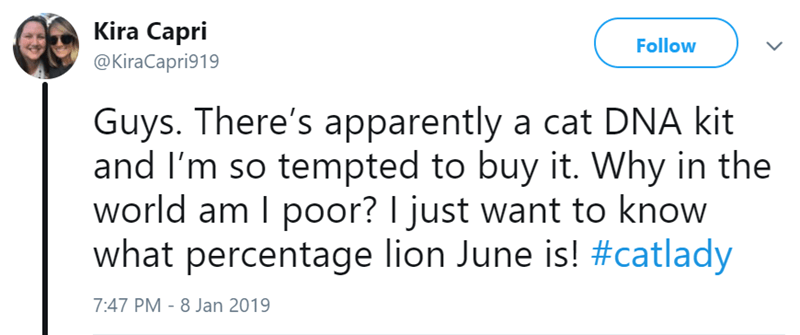 Text - Kira Capri @KiraCapri919 Follow L Guys. There's apparently a cat DNA kit and I'm so tempted to buy it. Why in the world am I poor? I just want to know what percentage lion June is! #catlady 7:47 PM 8 Jan 2019