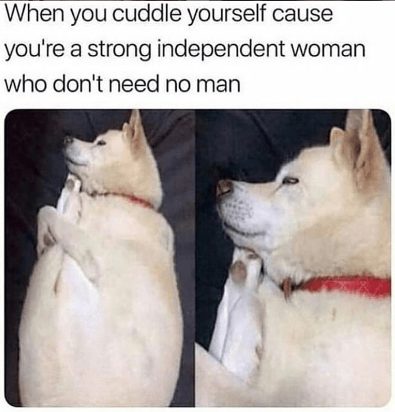 Mammal - When you cuddle yourself cau you're a strong independent woman who don't need no man