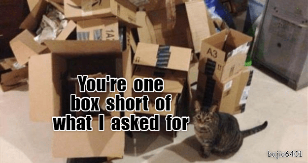 caturday meme of a cat standing near a pile of cardboard boxes