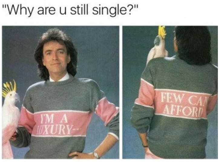 "Meme about being single with pic of man wearing a sweater that says ""I'm a luxury few can afford"""