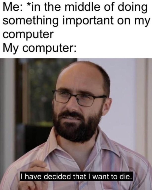 """Meme that reads, """"Me: *in the middle of doing something important on my computer; My computer: I have decided that I want to die."""""""